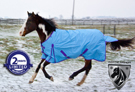 1200D Blue Purple Turnout Waterproof Horse Blanket 70 72 [WB0189] (Out Of Stock)