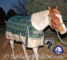 Green Plaid Waterproof Winter Turnout Horse Blanket 1200D [WB0192] (Out Of Stock)