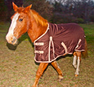 Brown Durable Turnout Waterproof Winter Horse Blanket 70 74 [WB0193A] (Out Of Stock)