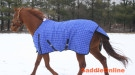 New Beautiful Breathable Winter Turnout Blanket 640D [b0042]