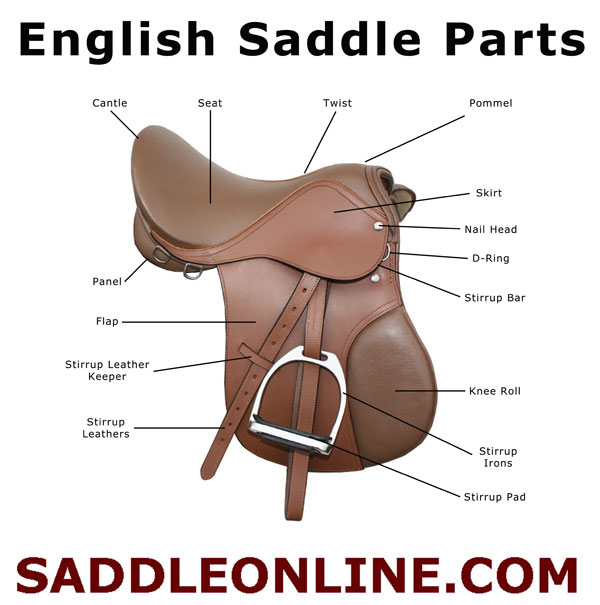 process analysis of saddling a horse Demonstration speech topics and methods to develop to demonstrate a process and give the (i did this and tooka video of saddling my horse and.