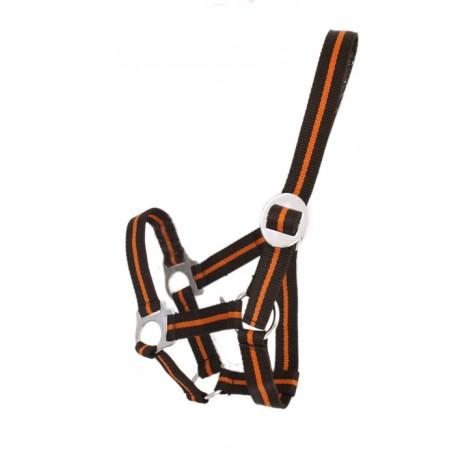 Mini Orange and Black Nylon Halter
