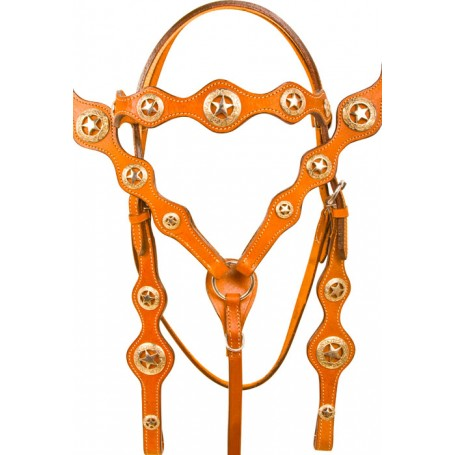 Texas Star Headstall Breast Collar Western Horse Tack Set