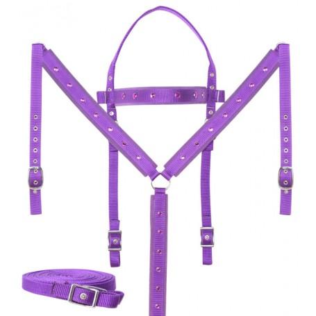 Purple Crystal Show Synthetic Nylon Western Horse Tack Set