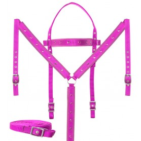 Pink Cowgirl Barrel Racing Western Horse Tack Set Crystal Show Synthetic Nylon