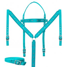 Teal Western Horse Tack Set Barrel Racing Crystal Show Synthetic Nylon
