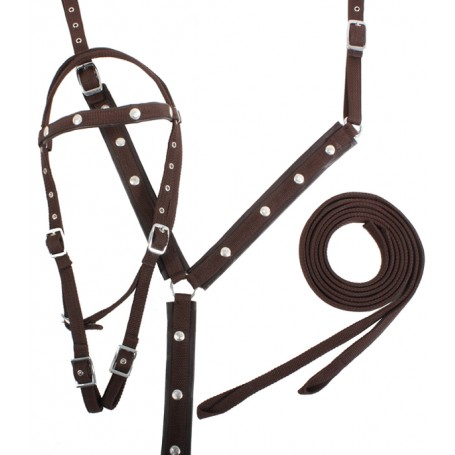 Horse Nylon Headstall Reins Breast Collar Set